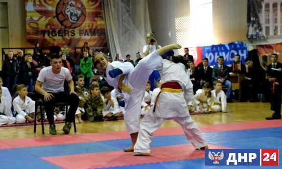 В Донецке стартовал открытый чемпионат по каратэ с участием более 370 спортсменов из ДНР, ЛНР и РФ