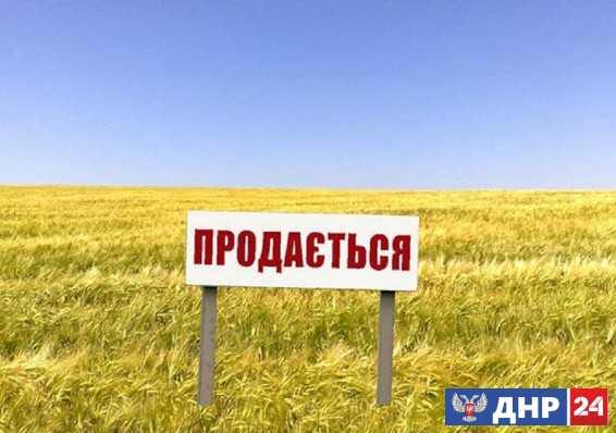 Rzeczpospolita: главное – успеть купить украинские чернозёмы